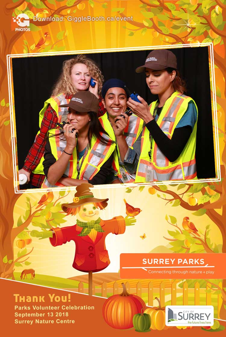 City of Surrey PIP 2018