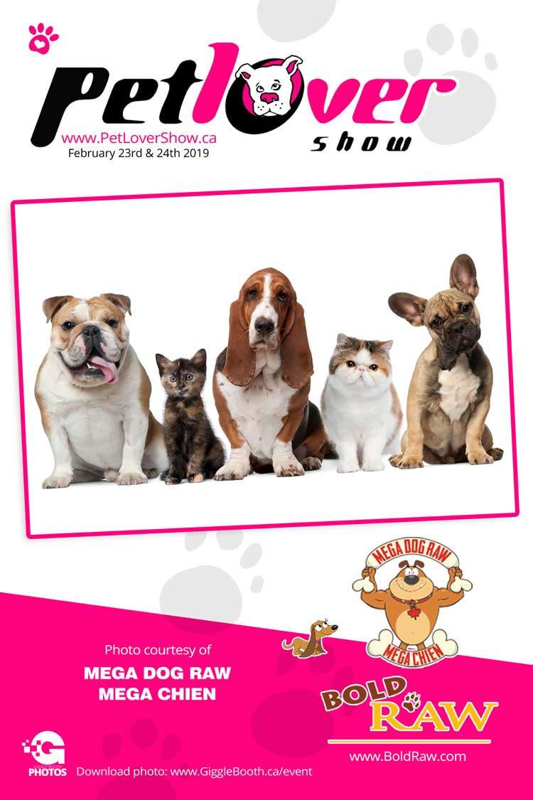 The Pet Lover's Show 2019